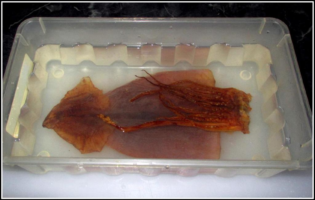 A Whole Dried Squid Soaking