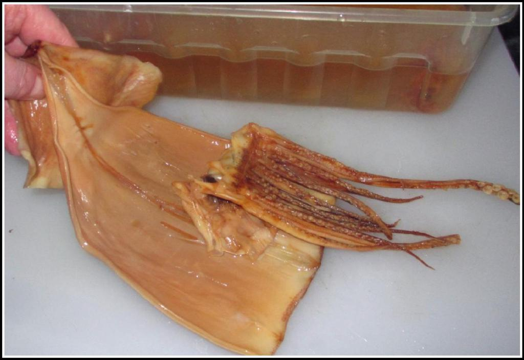 A Well Rehydrated Dried Squid
