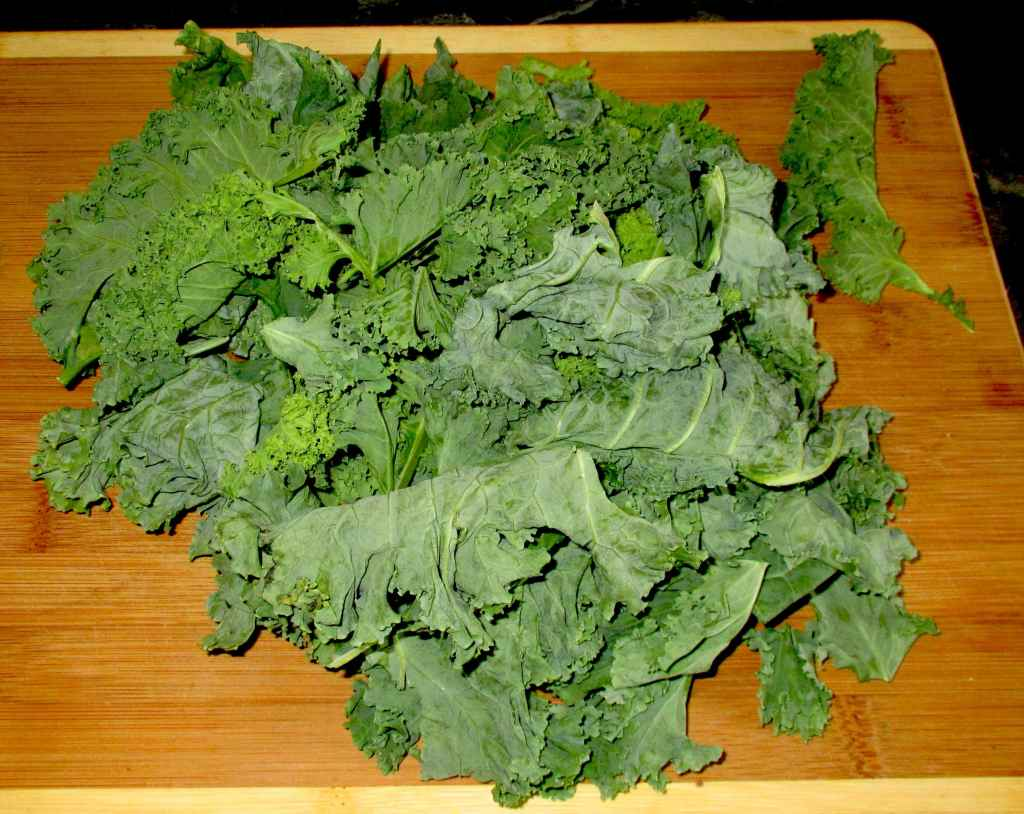 A small bunch of Kale