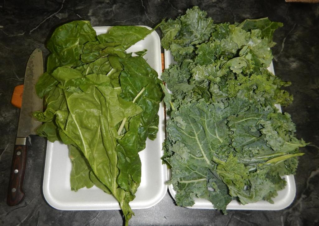 Leaves from Swiss Chard and Kale