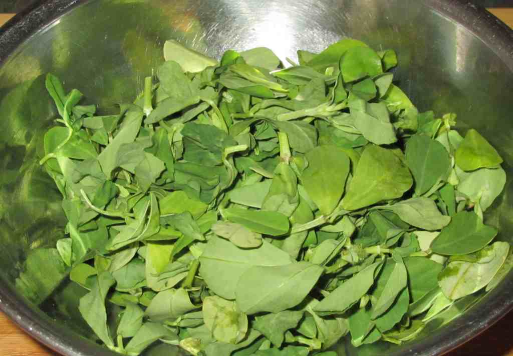 Chopped Fenugreek Leaves (Methi)