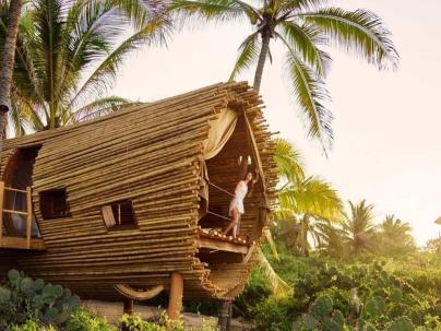 playa viva tree house