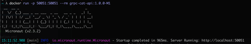 micronaut startup output in 965ms 1024x182 - NATIVE IMAGE