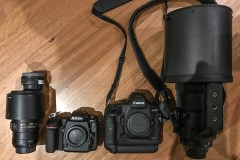 The argument for a pro DX crop camera - Nikon D500