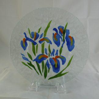 Blue Water Iris