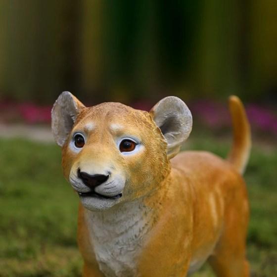 Lion cub prop hire