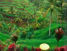 Amandari-Ubud-Bali-Indonesia-1-