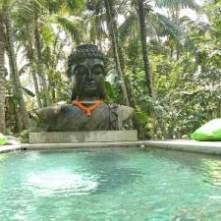 Basundari-Ubud-pool-1-1
