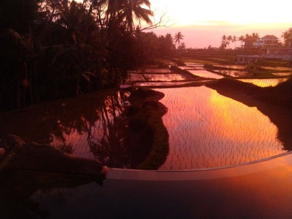 Basundari-Ubud-sunset-1