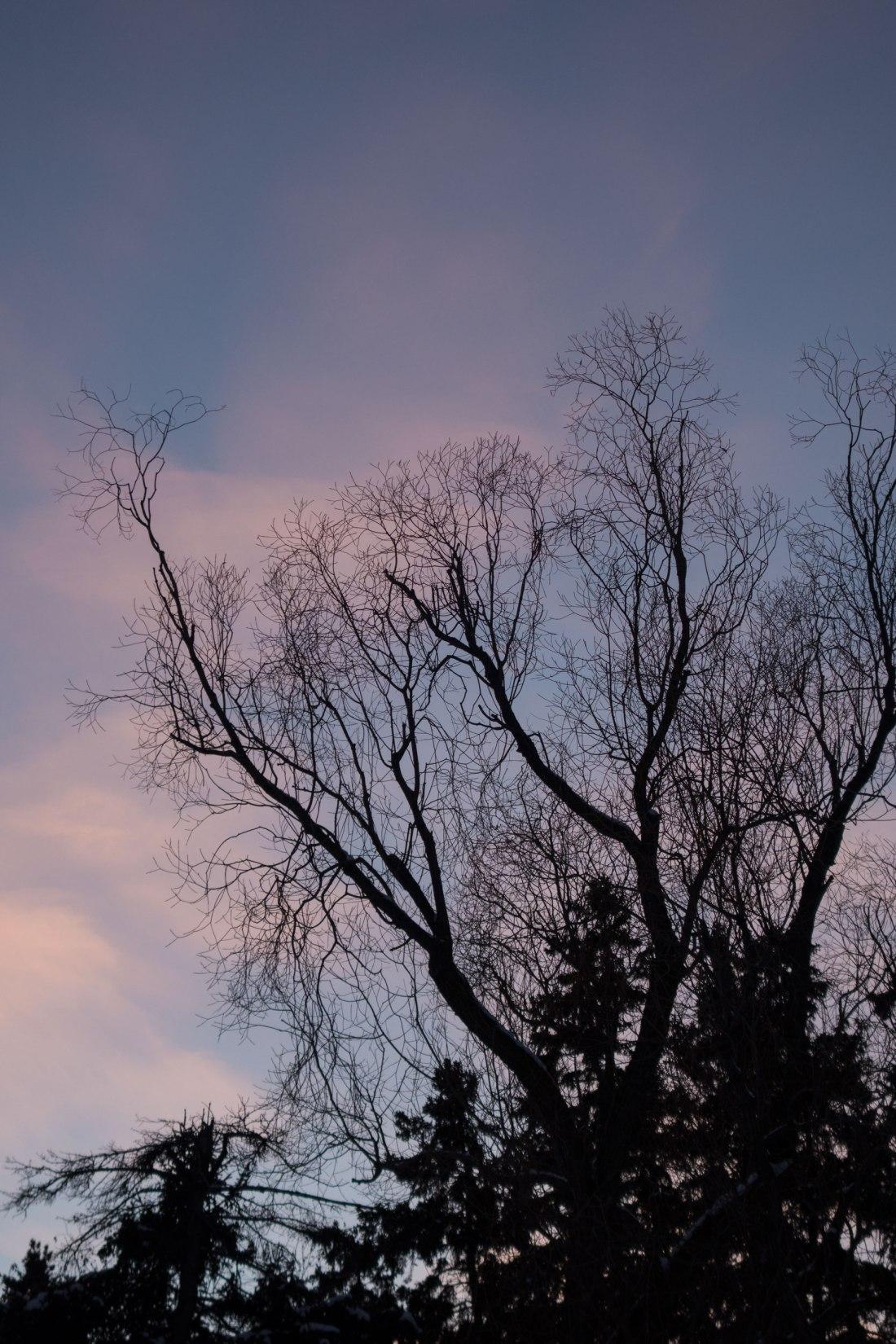 dusk3