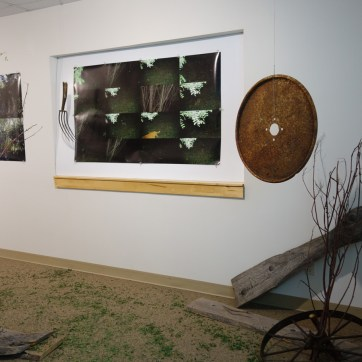 photo montage of animals in the installation on the farm