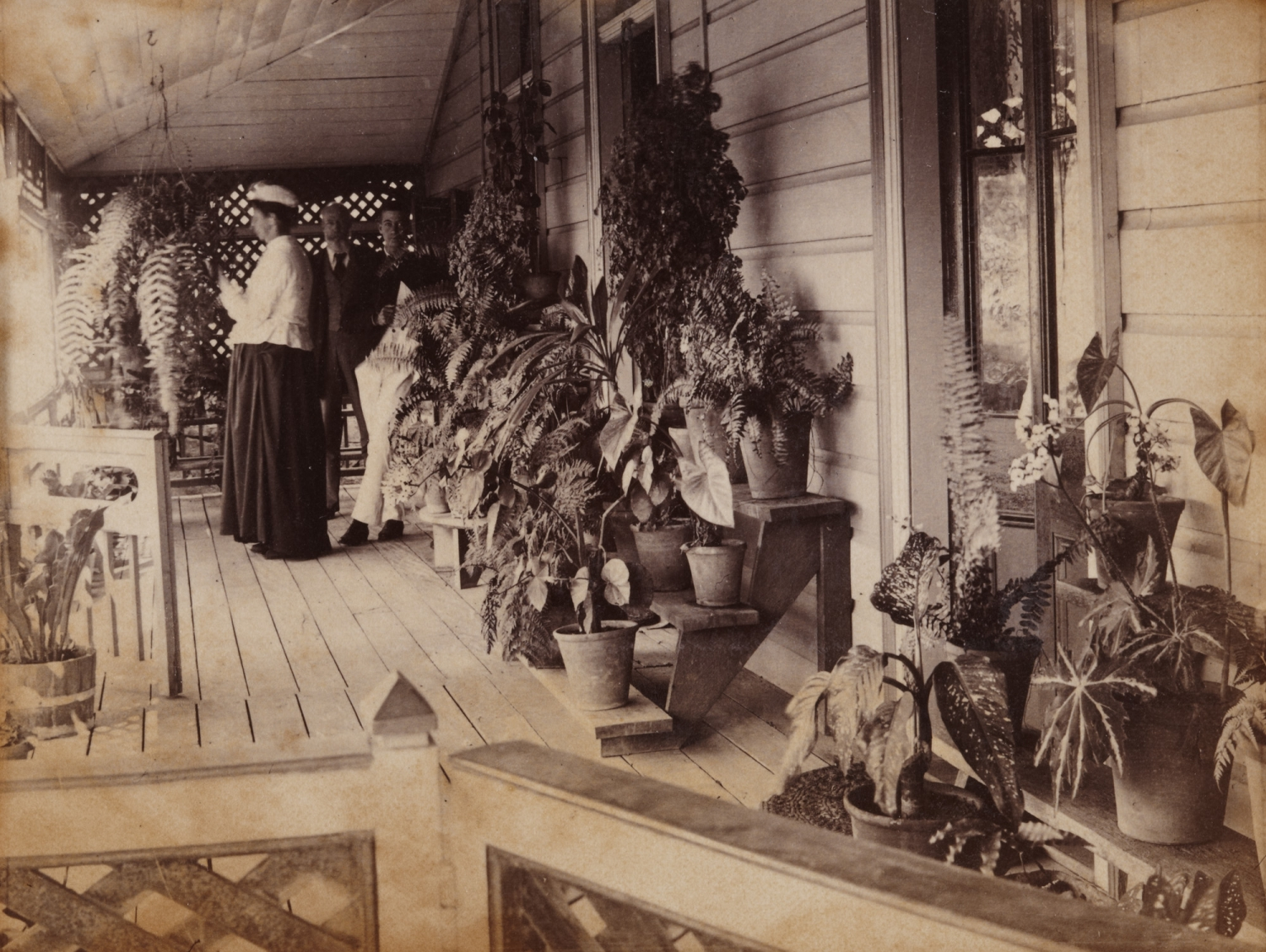 Vaucluse House Plant Stand Sydney Living Museums
