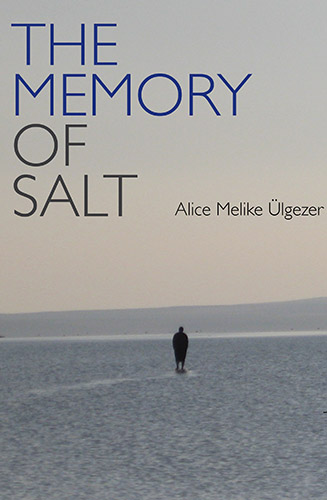 The Memory of Salt by Alice Melike Ulgezer cover