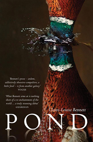 Pond by Claire-Louise Bennett book cover