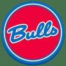 The Bulls