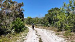 Yuraygir Coastal Walk - the Soft Sand Track
