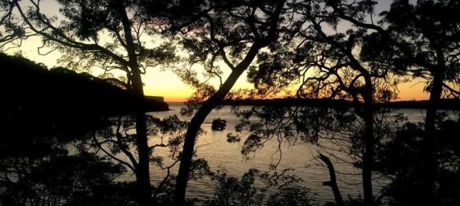 Trail running dawn