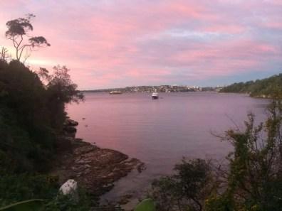 Trail running rewards - sunrise over Sydney harbour