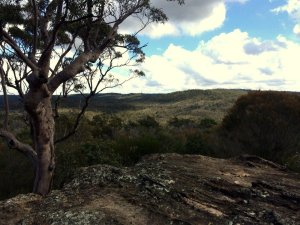 Deep Creek to Bahai Temple walk: Garigal National Park views from the high point