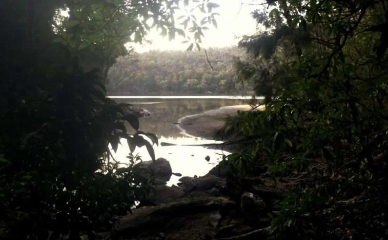 Berowra to Mt Ku-ring-gai: mudflats