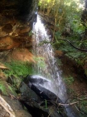 Castlecrag waterfall - Harold Reid Reserve and Castlecrag