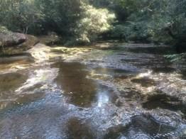 Rocky Creek Crossing upstream