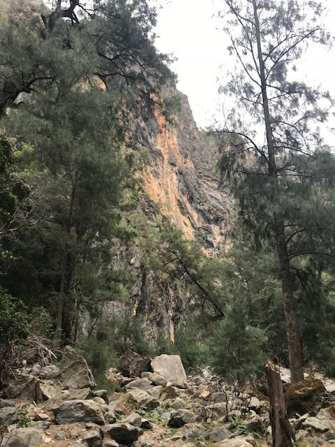 Bungonia Gorge