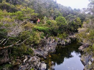 Heaphy Track creek