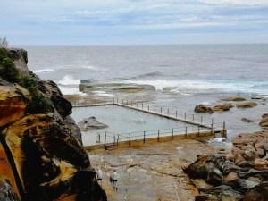 North Curl Curl rock pool