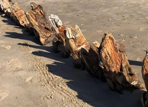 SCIW - Woolgoolga ship wreck