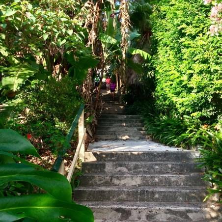 Sarahs Walk Stairs Top - 151