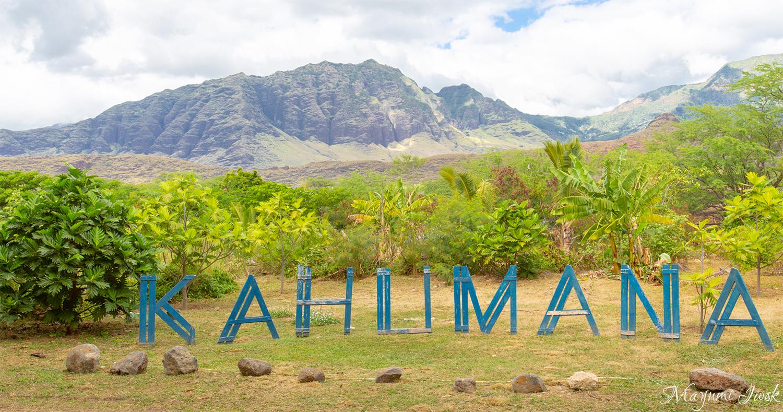 オアフ島のオーガニックファームにあるカフェ KAHUMANA ORGANIC FARM | HAWAII