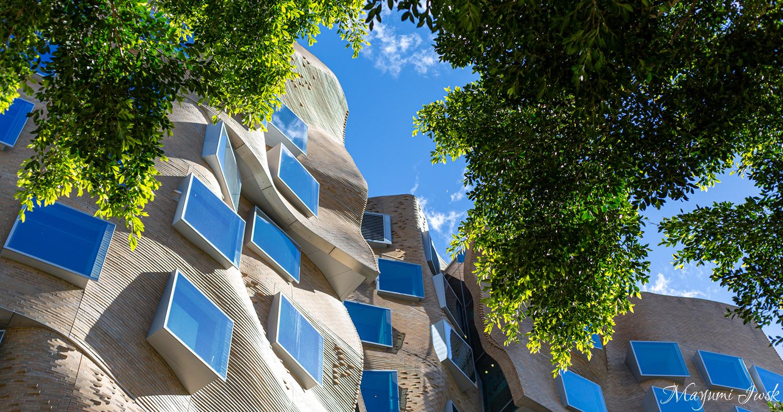 シドニー建築巡り④ UTS BUSINESS SCHOOL(シドニー工科大学ビジネススクール) | HAY MARKET
