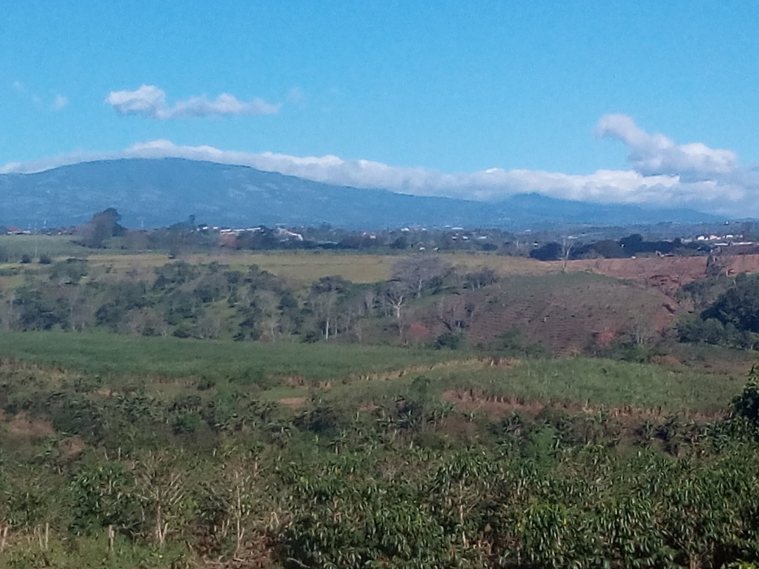 View on road leading up to Monteverde