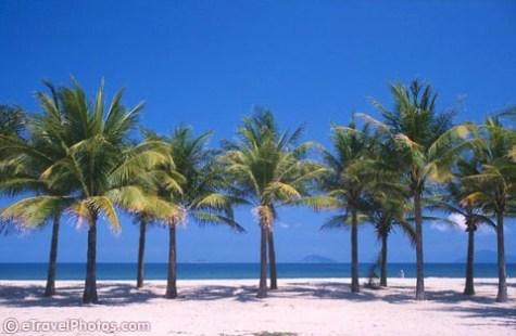 Ser frem mot ferie i Vietnam før jul!