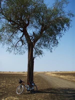 Det virket lovende på den sudanske landsbygda i starten!