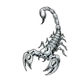 Fecioara femeia scorpion cu barbatul Compatibilitatea femeii