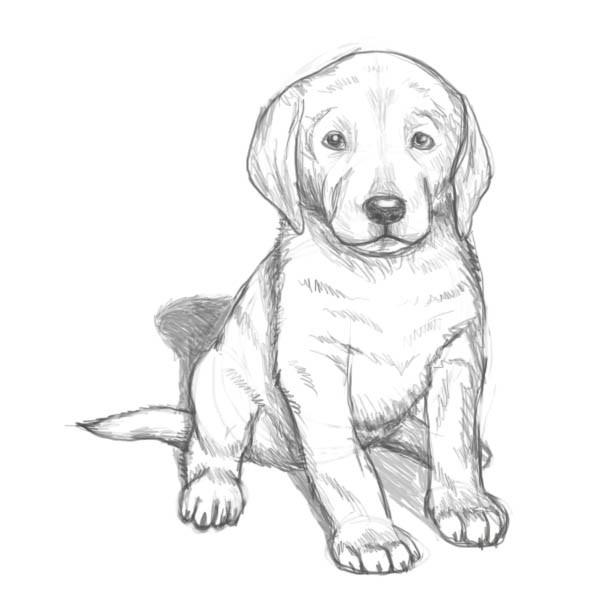 вас рисунки животных рисовать собаку японские