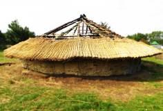 Replica Bronze Age roundhouses 2014.