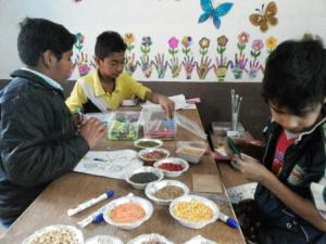 SEEDS AND BEADS CLASS