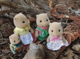sylvanian family photos 006