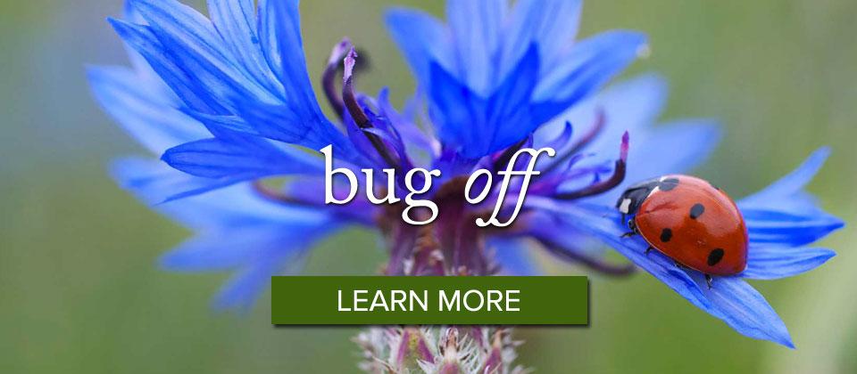 bugoff_slider