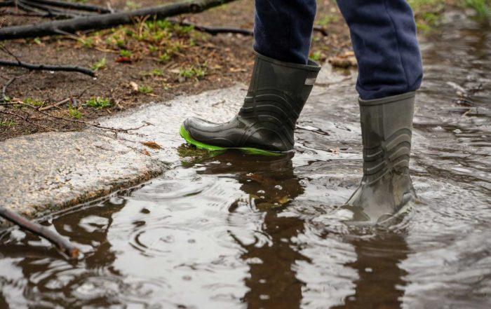 mudpuddle-1400x788