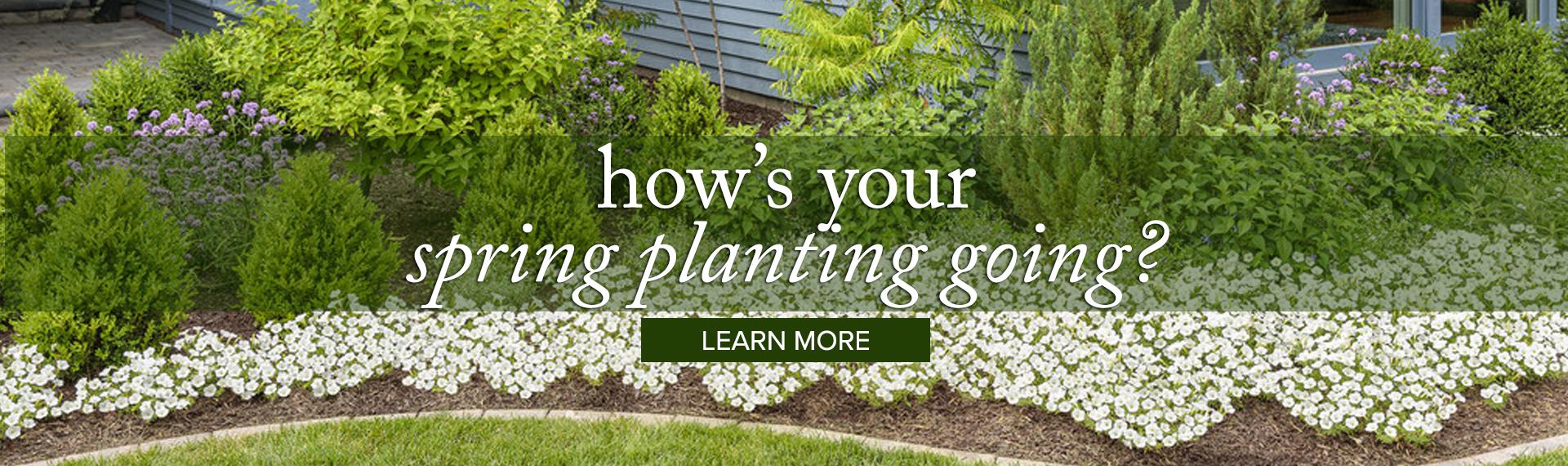 gardening_LEARN