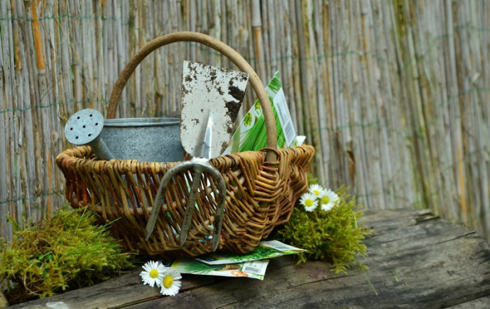 gift-of-gardening