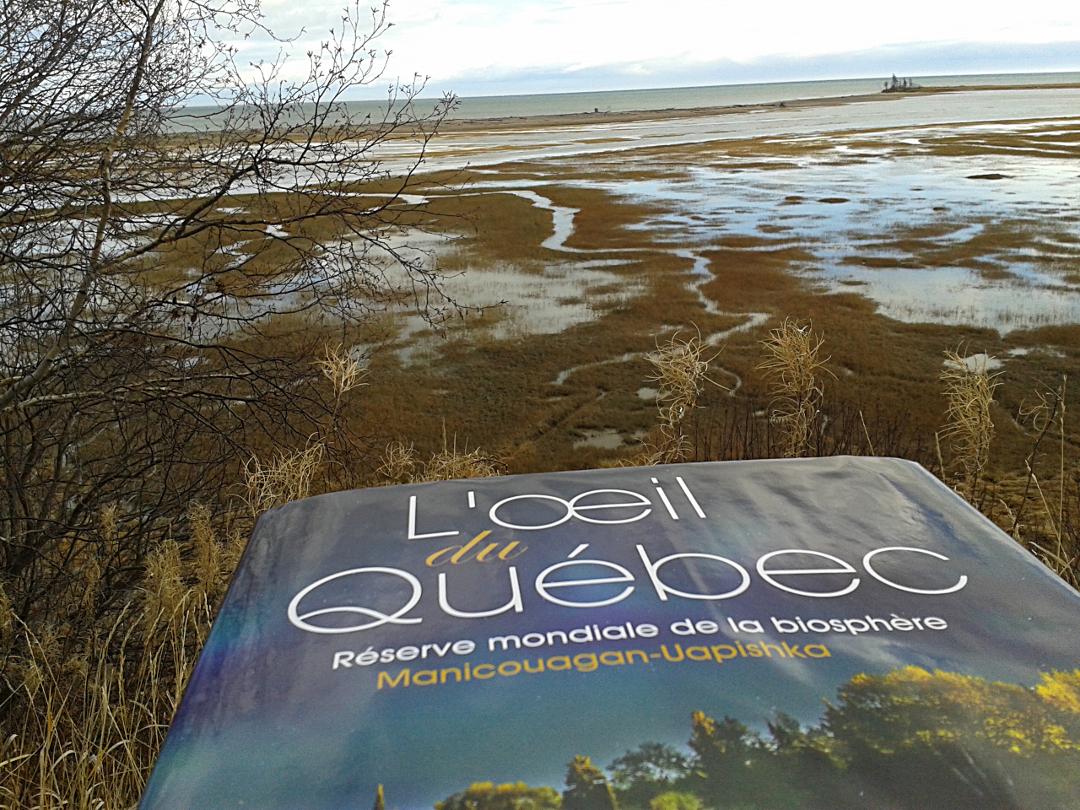Texte dans le livre L'oeil du Québec