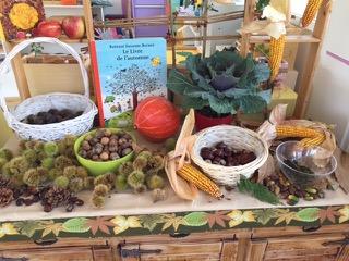 Montessori - table de nature