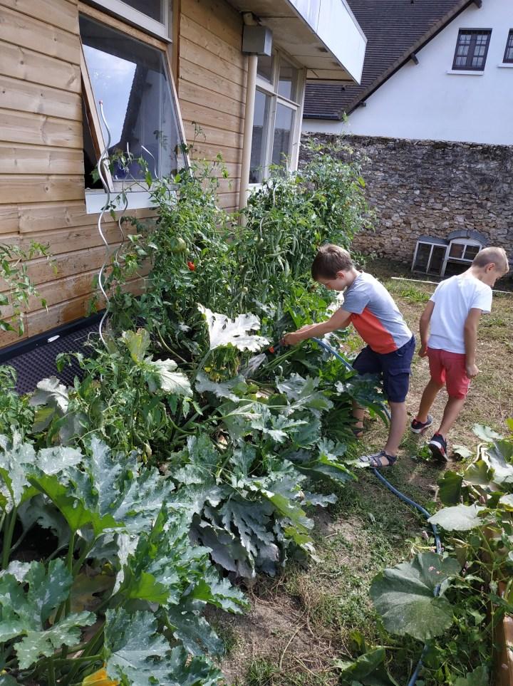 Sensibilisez nos enfants aux défis écologiques