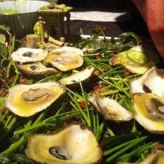 Beaucoup d'huîtres...