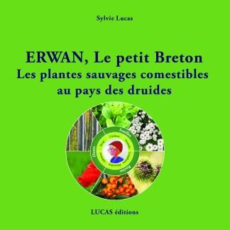 Erwan, le petit breton les plantes sauvages comestibles au pays des druides